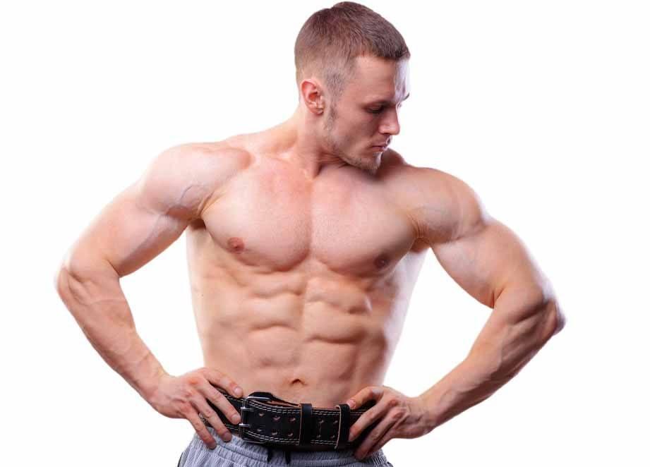 Abs Workout Belt